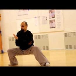 Wuxing Ziran Gong – Wudang Principles