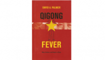 Qigong Fever: body, science and utopia…